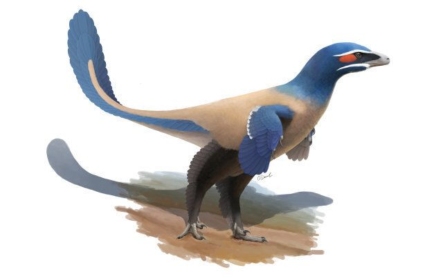 Oliver Demuth recreated what the Albertavenator curriei may have looked like.
