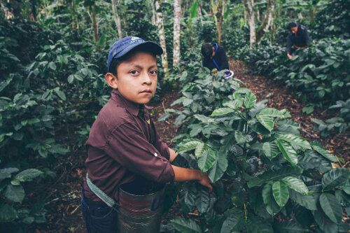 Canadian Consumers Shouldn't Accept Child Labour In Their