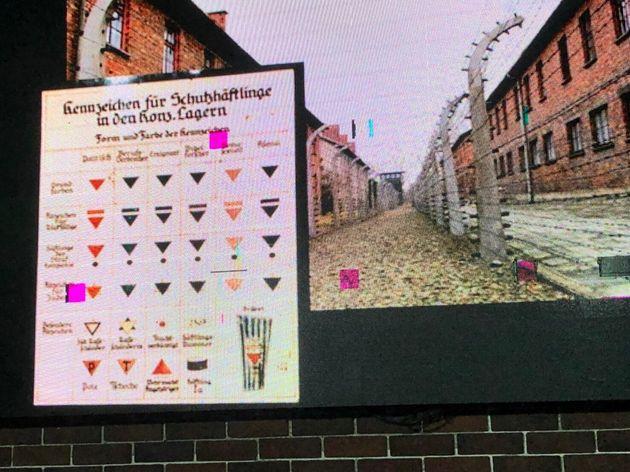 ナチスドイツに収容された人々の属性を描いた図