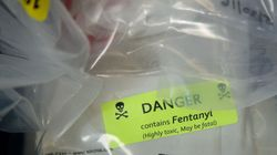 Toronto Fentanyl Overdose Deaths Lead To Public Safety