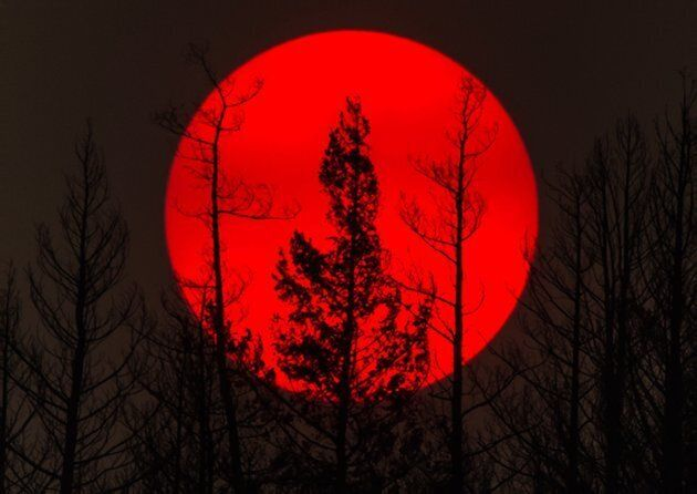 The sun is obscured by smoke from wildfires in the distance behind burnt trees in Williams Lake, B.C.,...