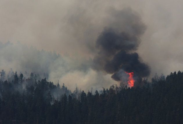 A wildfire burns north east of the town of Cache Creek, British Columbia, Canada July 18, 2017.