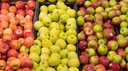 Canada's Food Guide Changes Are Coming, Health Advocates Want Major