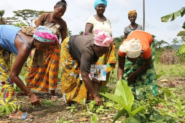 The mothers' support group in Bendu Sandor community, Kono district, was set up two years ago to, in part, to help improve the community's food supply.