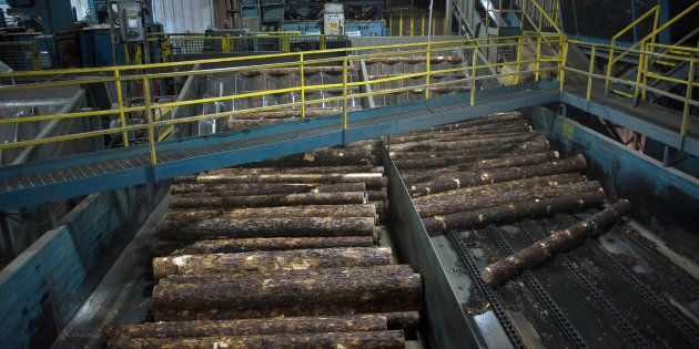Raw lumber moves into the saw mill at the Resolute Forest Products facility in Thunder Bay, Canada, Ontario,...