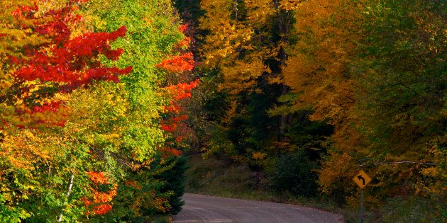 Fall colours along Highway 2 through Parc national du Mont Tremblant in
