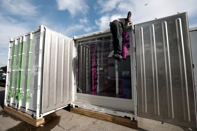 Shipping containers repurposed as a hydroponic farm in Brooklyn, NY.