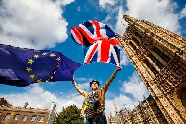 Pro-European Union demonstrators protest outside the Houses of Parliament in central London against the...