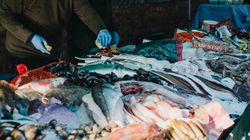 Seafood Fraud Is A Bait And Switch That Hurts Honest