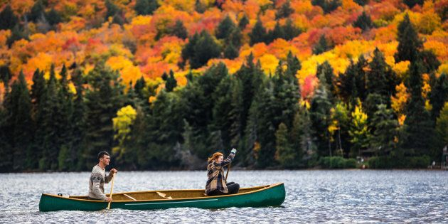 A couple enjoys a ride on a canoe in Algonquin Park in