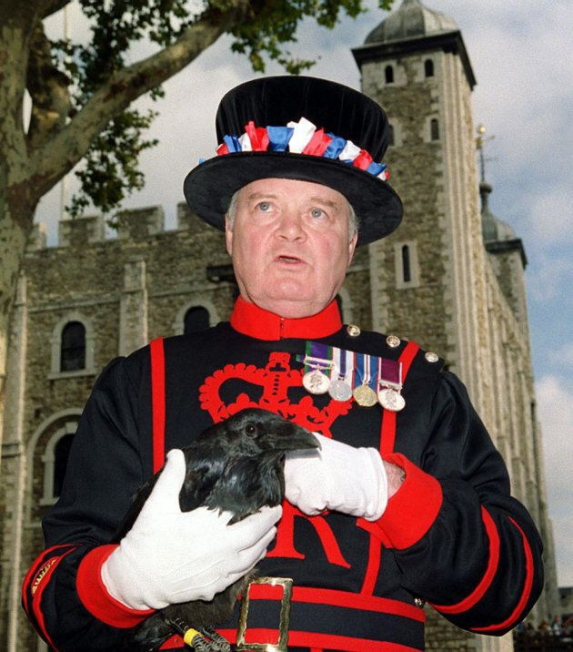 Yeoman Raven Master Derrick Coyle, holds Branwen, the newest addition to the ravens at The Tower of London,...