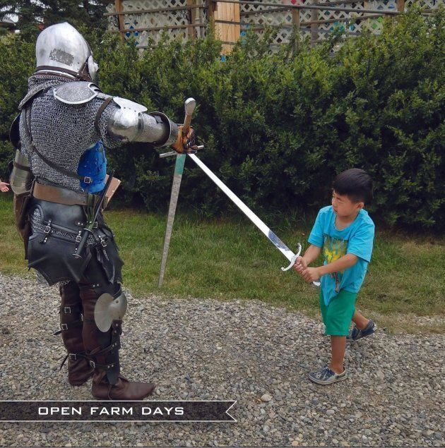 A child fighting a knight during an open farm day at the Good Knights Medieval Encampment near Three Hills, Alta.