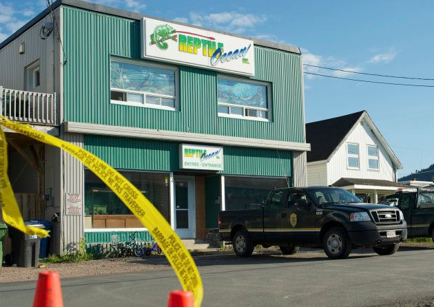The Reptile Ocean store front is pictured on the evening of a vigil for Noah and Connor Barthe in Campbellton,...