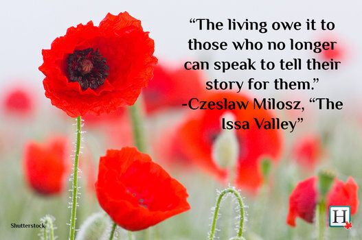 remembrance day quotes words to honour veterans huffpost