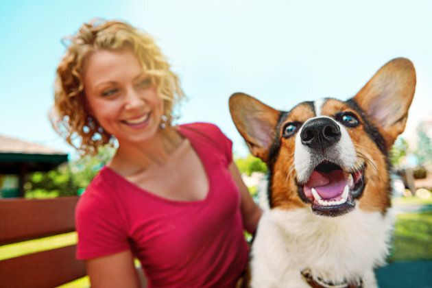 The dog ownership effect is epsecially noteworthy for single people, with reduced risk of both death...