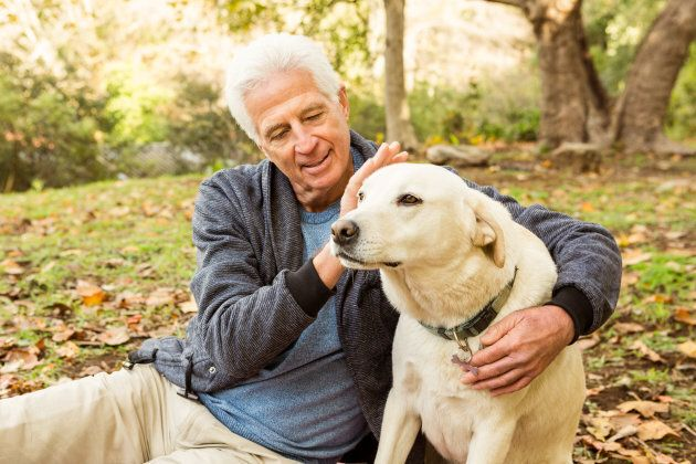 Owning Dogs Reduces Risk Of Death From Cardiovascular Disease: