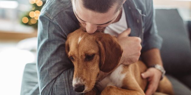 A study has found that owning a dog can lead to lower risk of death from cardiovascular disease or other