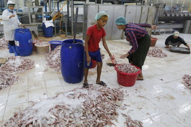 A boy works at a seafood export factory in Myanmar on Feb. 19,