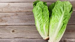 1 Death Linked To Romaine Lettuce E. Coli Outbreaks In 5