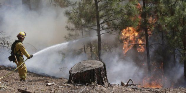 A firefighter hoses down hot spots while fighting the King Fire on Tuesday, Sept. 23, 2014, in Mosquito,...