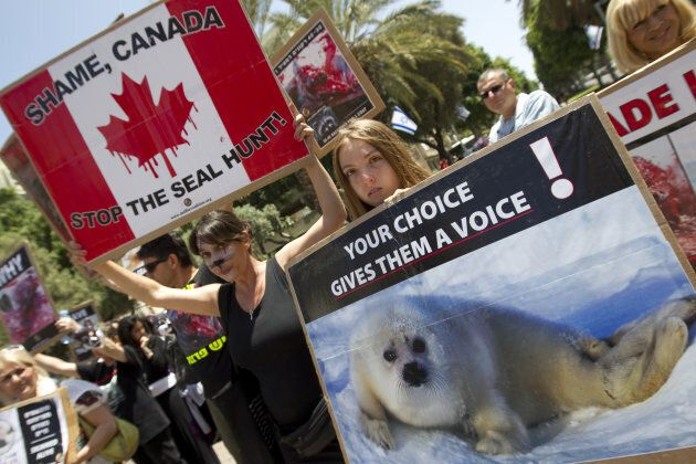 Israeli anti-fur activists hold banners during a rally against the exploitation of seals on April 27,