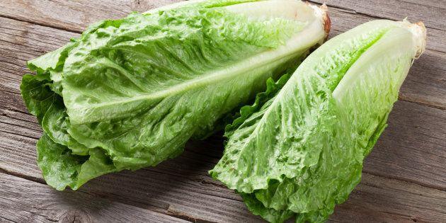 Fresh Romano salad on wooden