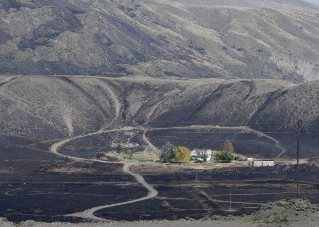 Some areas, including this property in Ashcroft, B.C. were spared from being burned when air tankers...