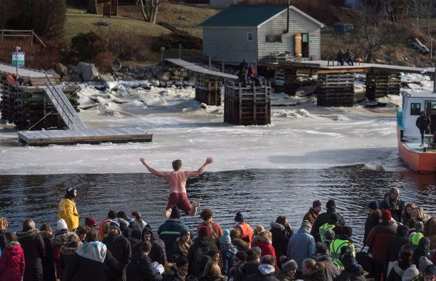 A man jumps off a wharf into the Atlantic Ocean as hundreds gathered for the Herring Cove Polar Bear...