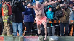 Some New Year's Day Polar Bear Dips Go Ahead Despite Freezing