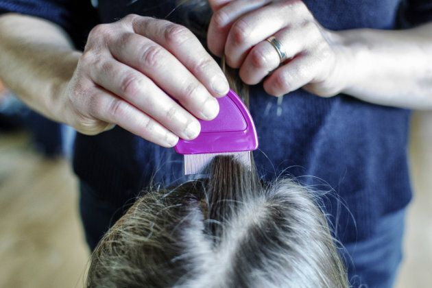 I Thought Catching Lice From My Toddler Was My Breaking Point. I Was