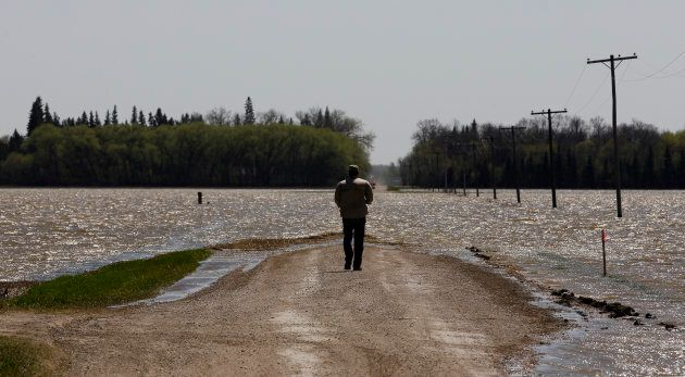 A man looks at a flooded farm field from a deliberate breach of a dike on the Assiniboine River near...