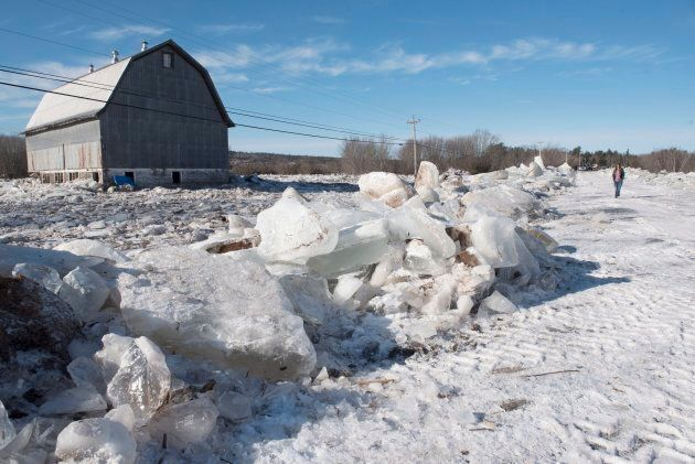 A barn sits surrounded by water and ice as Verona Watson walks between the piles of ice on Route 101 in Hoyt, N.B., on Jan. 14, 2018.