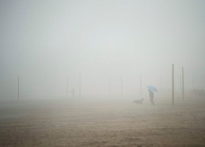A man walks his dog on the beach during a foggy rainy day in Toronto on March 10, 2016.