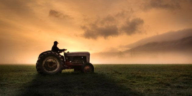 Farm Stress And The Next