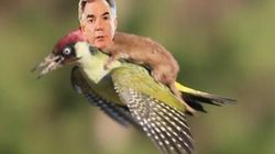 Prentice Mocked HARD With