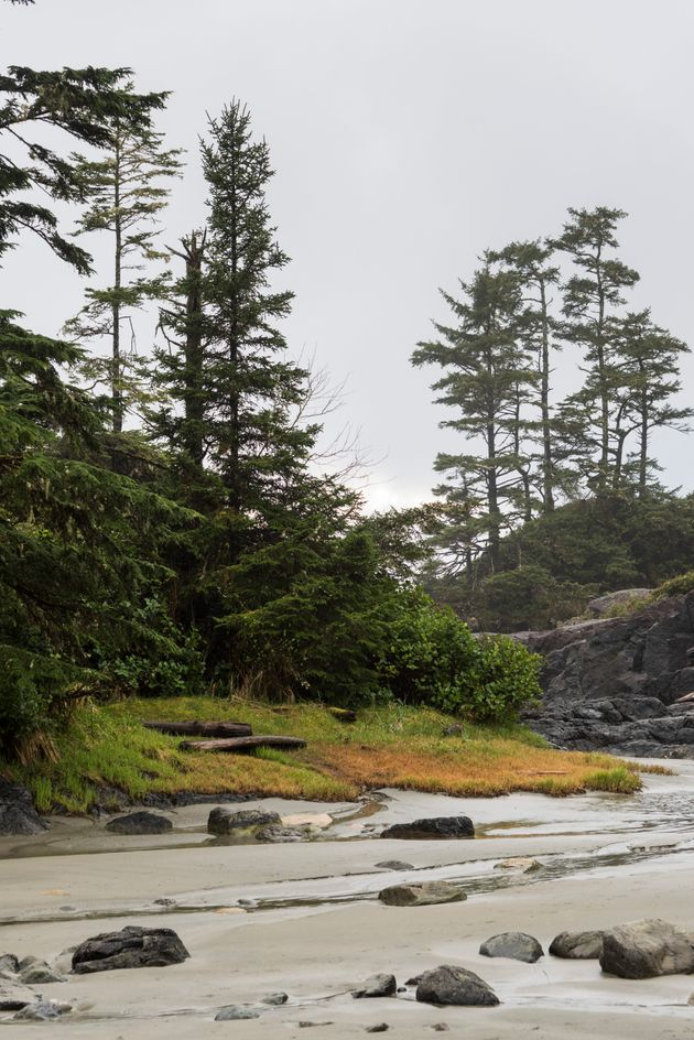 Pettinger Point, Tofino,