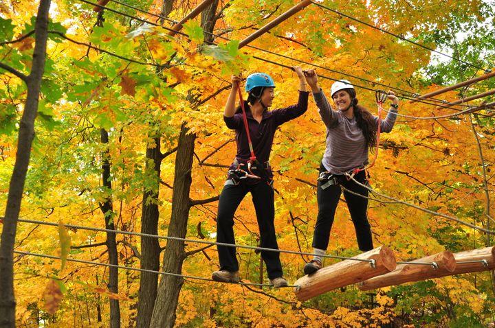 Treetop Trekking, Brampton