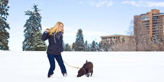 A woman with a dog outside in the snow. A solid majority of Canadians believes landlords should have...