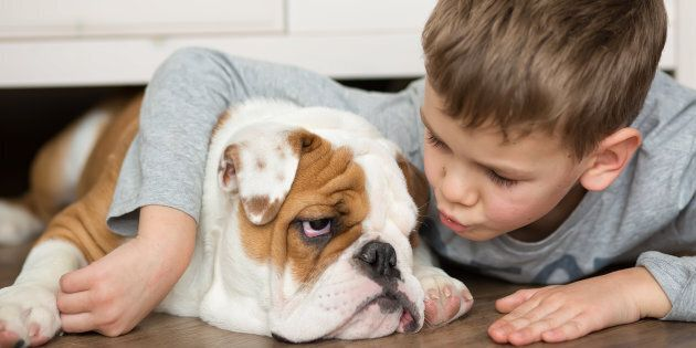 Naturopath Facing Controversy After Treating A Child With Rabid Dog