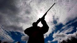 The Long-Gun Registry Is Dead, But Tories Can't Let It