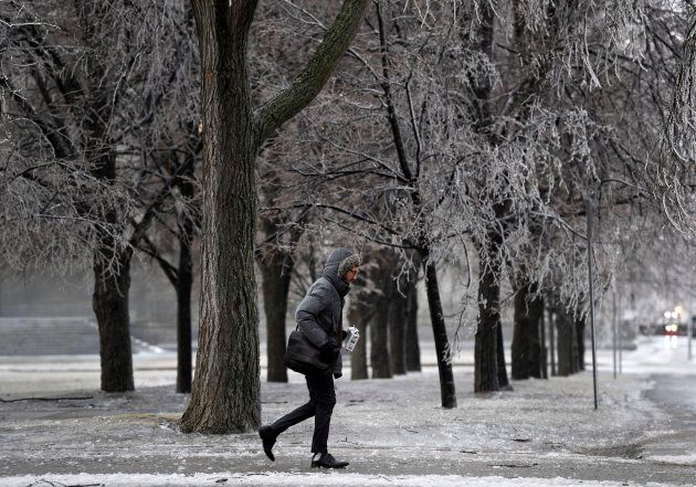 A man passes ice laden trees as a storm brings freezing rain in Ottawa on April 16,