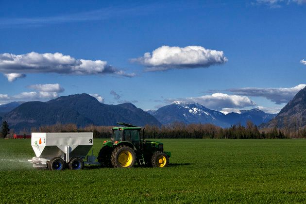Alberta's strong agriculture sector can help spur the diversification of the province's