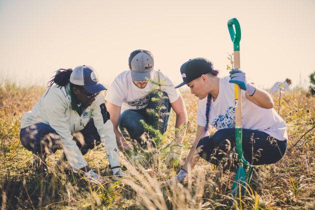 Tree planting at Swishwash Island, B.C.