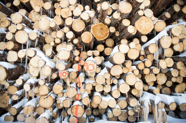 Green softwood lumber is stacked at Groupe Crete, a sawmill in Chertsey, Que. on Jan. 17,