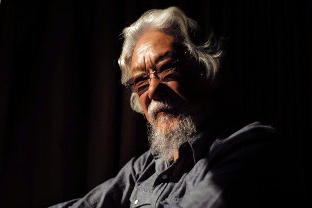 Scientist, environmentalist and broadcaster David Suzuki is pictured in a Toronto hotel room, on Nov....