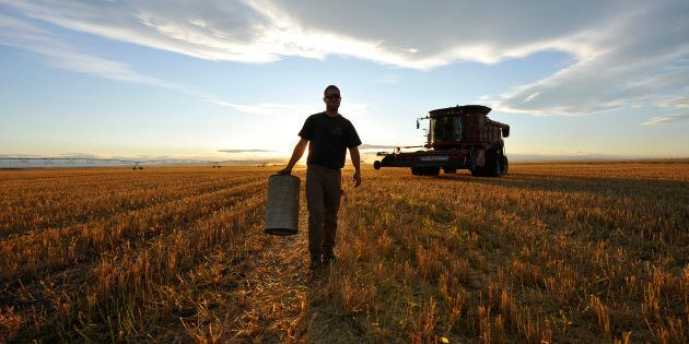A worker carries an air filter during wheat harvest on a farm near Fort MacLeod, Alta., Sept. 26, 2011....