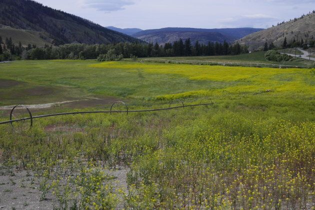 Much of the High Bar First Nation's traditional territory is now owned by ranchers. This ranch was photographed...