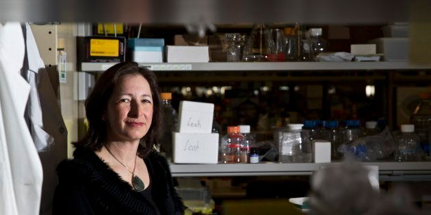 University of Toronto scientist Molly Shoichet poses for a photo on March 2,