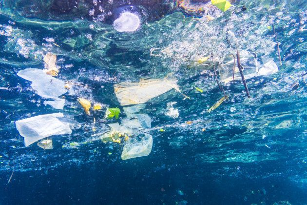 Plastic bags, bottles and cups float in the ocean near the Phi Phi Islands in Krabi,