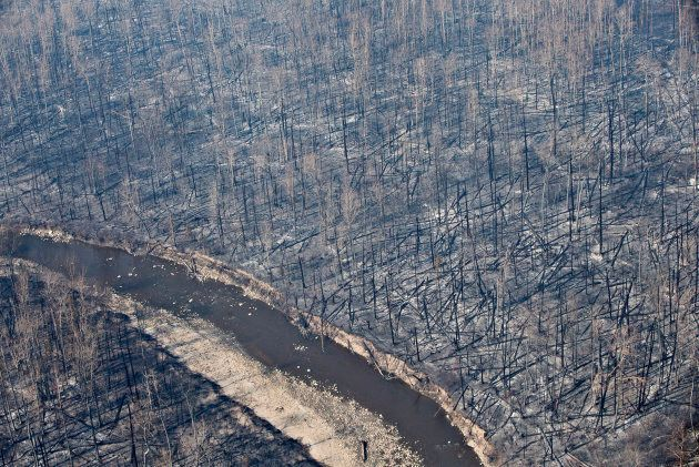 An aerial view of the burnt forest near Fort McMurray, Alta., after wildfires in May